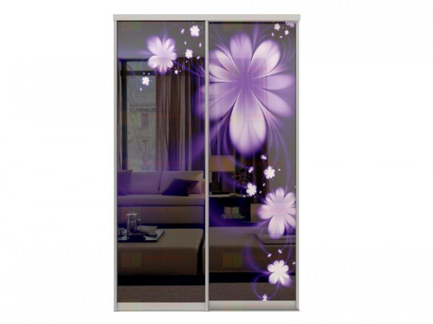 Двери для шкафа-купе Дк 240 2-35 Цветы