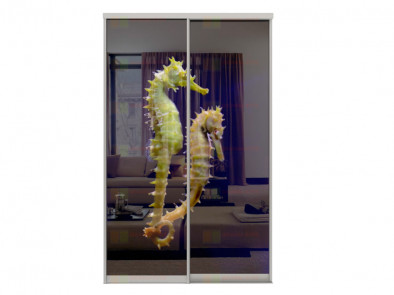 Двери для шкафа-купе Дк 240 фото 2-4 Морские коньки