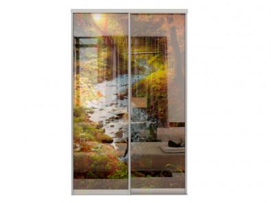 Двери для шкафа-купе Дк 240 фото 2-7 Лес