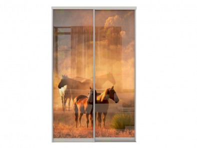 Двери для шкафа-купе Дк 240 фото 2-9 Лошади
